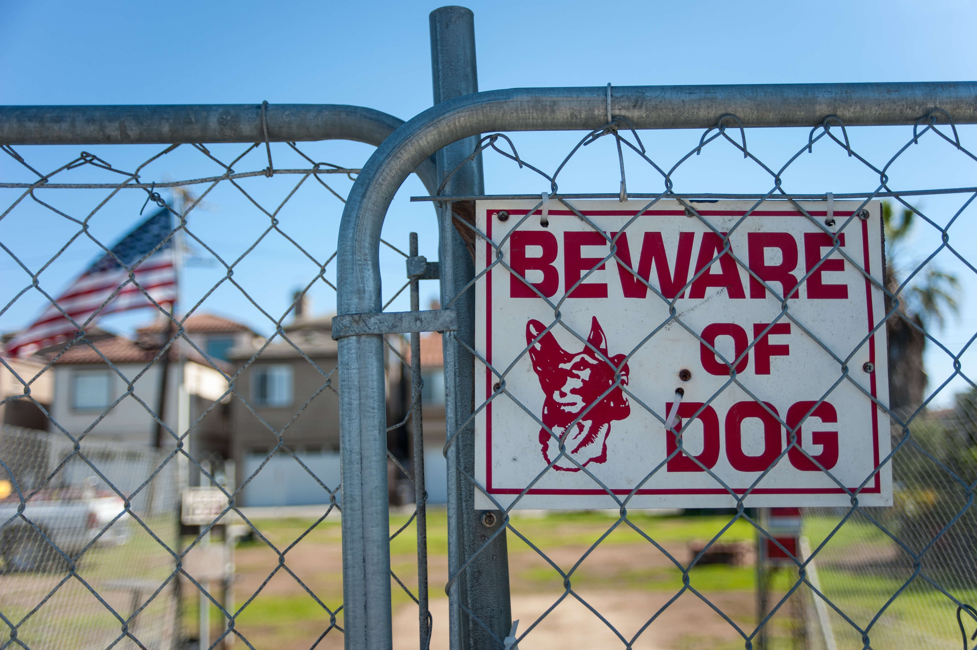 Learn more about a Pennsylvania dog bite case